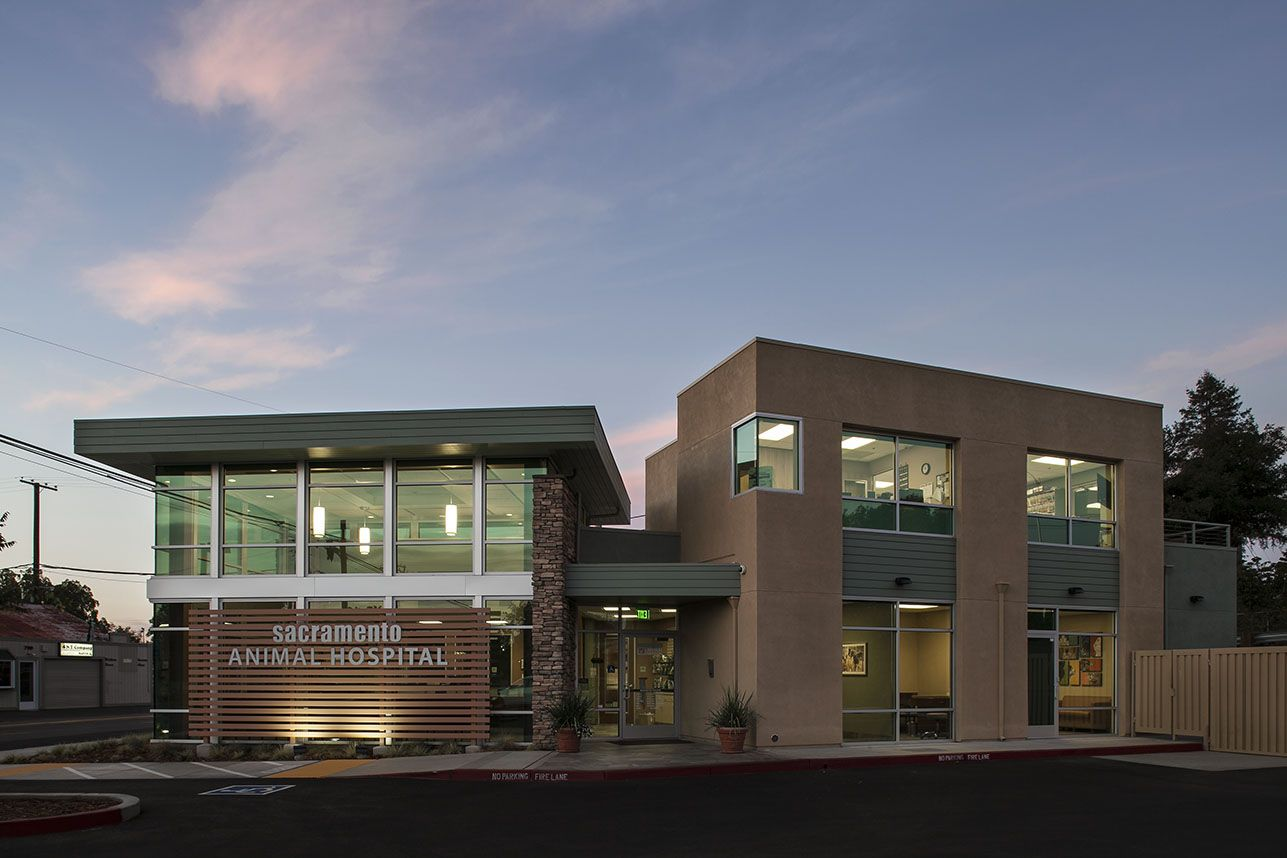 Veterinary Architecture Veterinary Hospital Design Sacramento