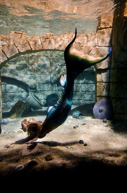 11++ 3 mermaid ideas