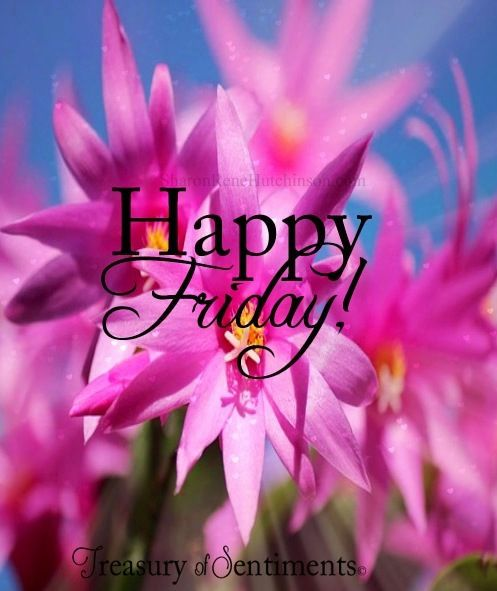Pink Happy Friday Flowers Good Morning Happy Friday Friday Its