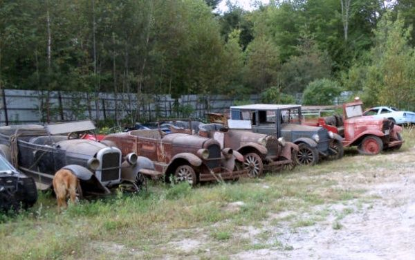 A Here Is Field Full Of Pre War Classics In Maine They Were Supposedly All Pulled Out Barn Recently And Are Now For Sale