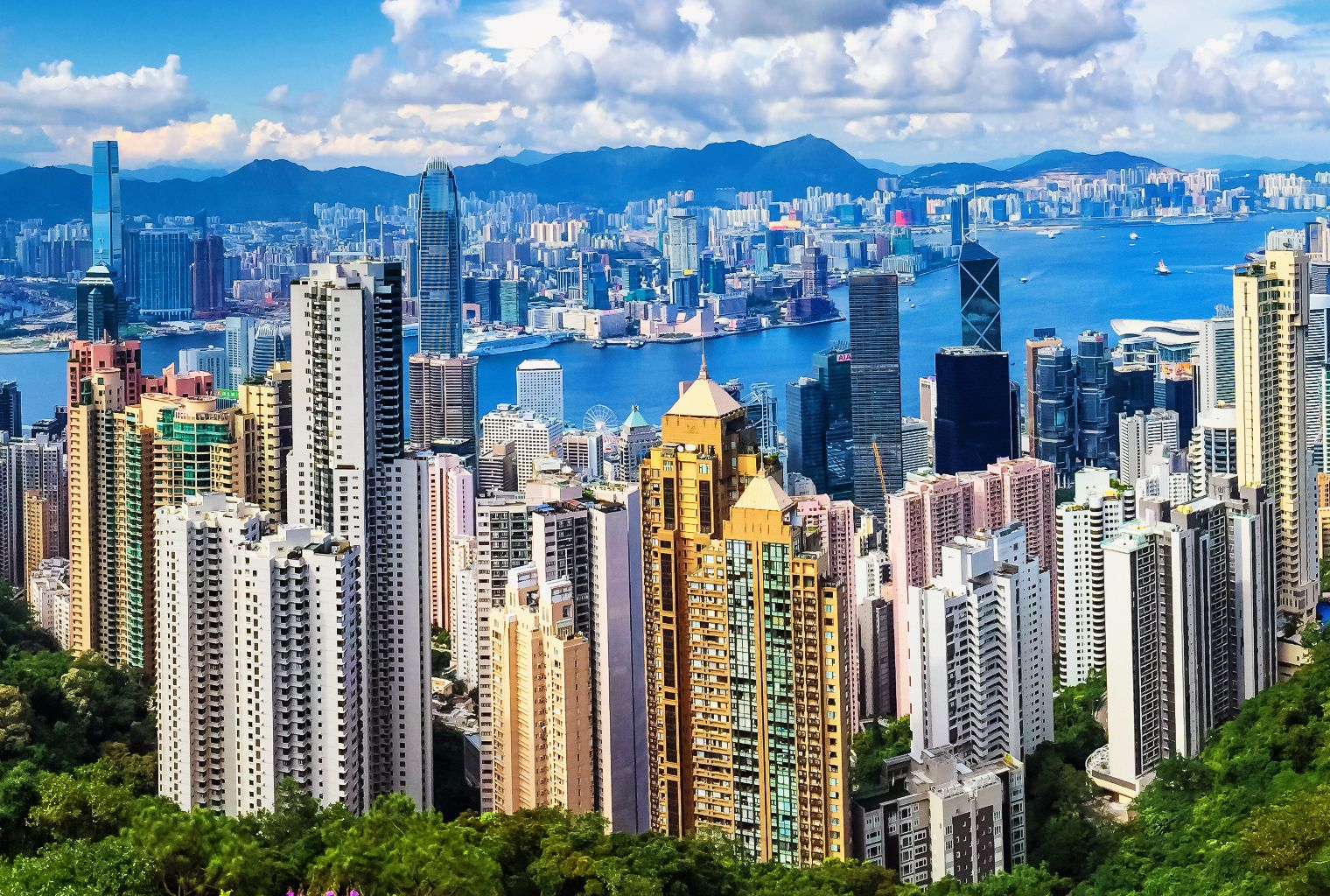 Hong Kong S Securities And Futures Commission Has Established A