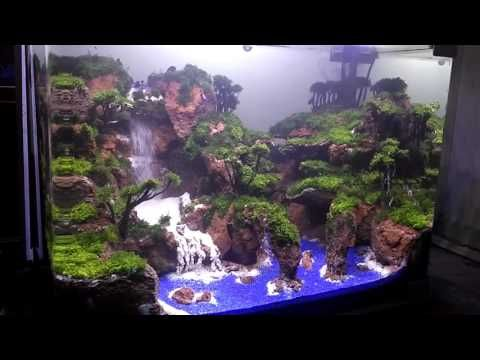 Aquascape Air Terjun Telaga Warna Youtube Aquascape Aquarium Fish Tank Fish Tank