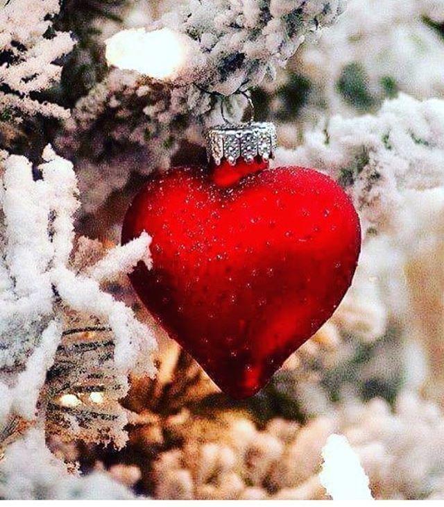 No solo adornes tú casa para Navidad; también adorna tú corazón con el perdón, la caridad y amor al prójimo ❤️ #navidadesjesus