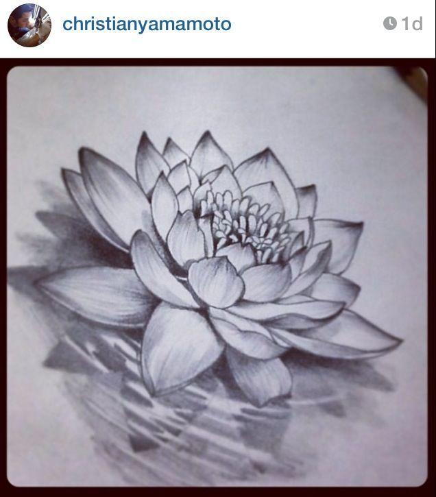 Rsultats de recherche dimages pour realistic lotus flower rsultats de recherche dimages pour realistic lotus flower drawings mightylinksfo