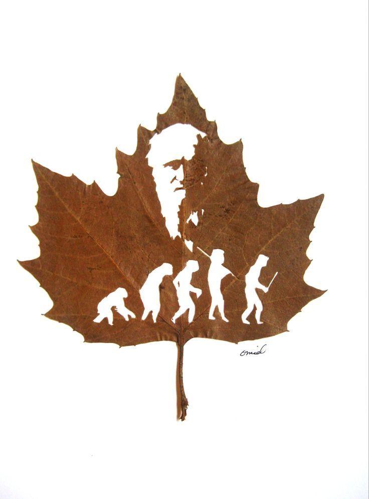 Amazing Leaf Cutting Art by Omid Asadi