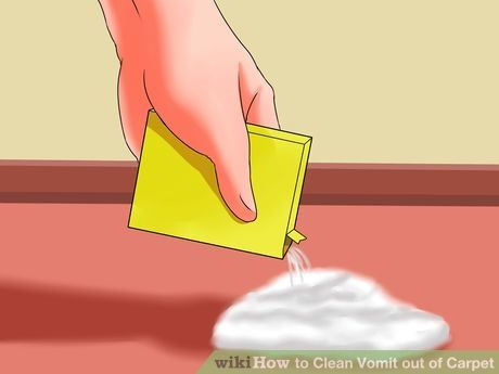How To Get Vomit Out Of Carpet >> Clean Vomit Out Of Carpet Cleaning How To Clean Carpet