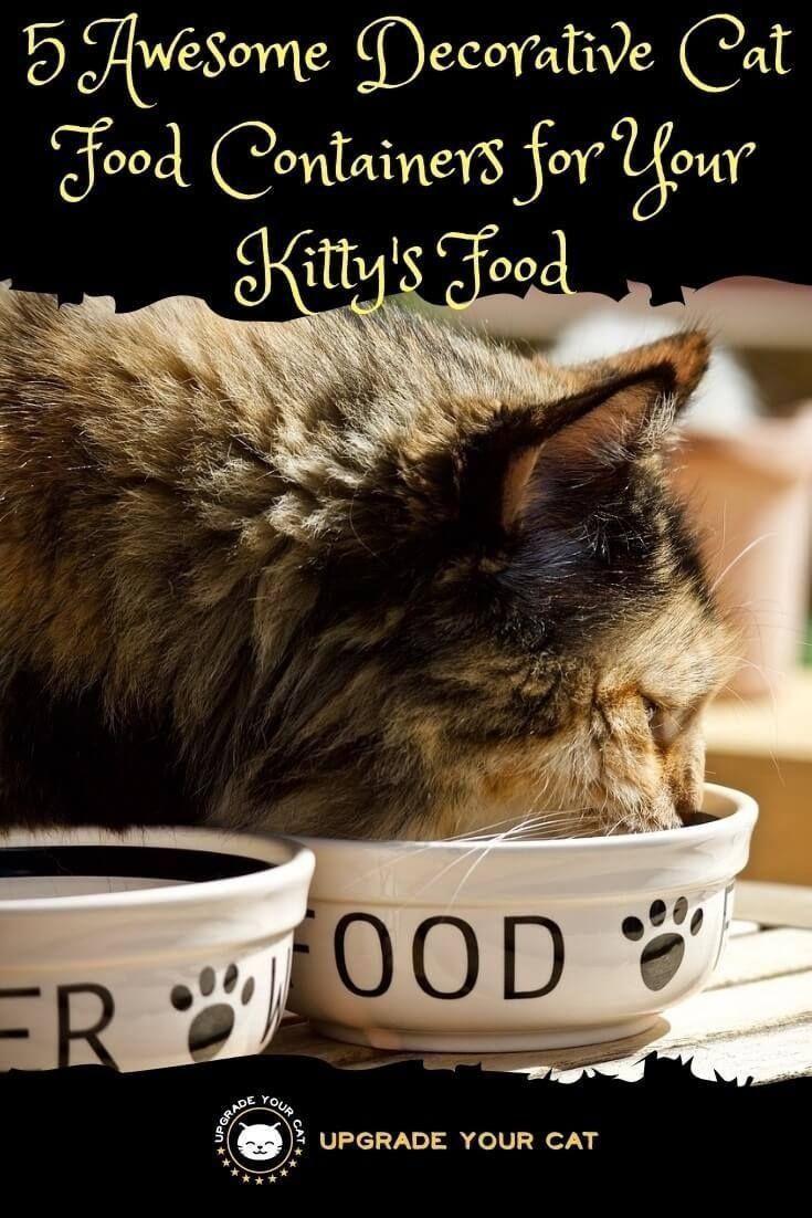 5 superbes bacs décoratifs pour chat Cat nutrition, Cat