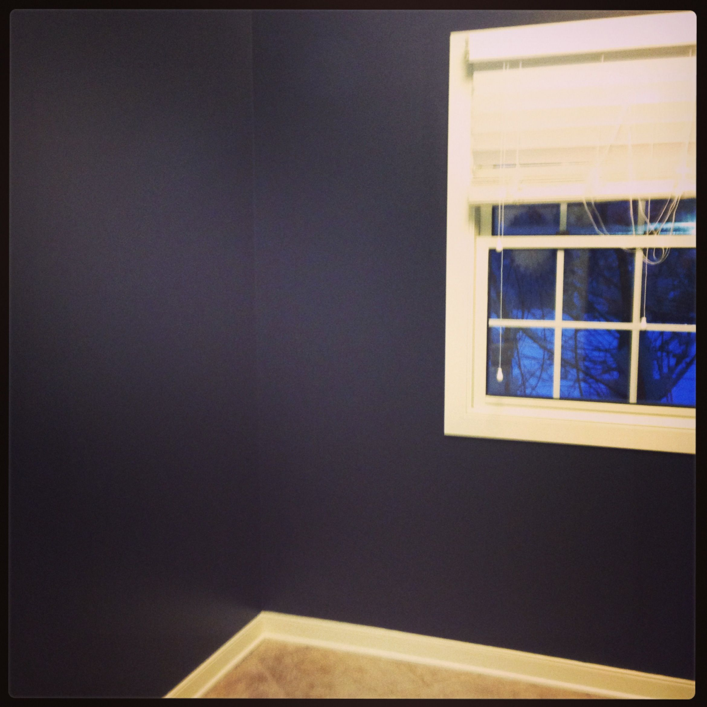 """Awesome Elegant Bathroom Paint Colors Behr Bathrooms: Behr """"Poppy Seed"""" In My Laundry Room. Love It!"""