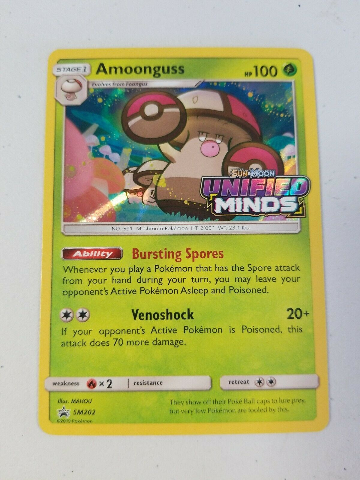 Non-Foil Groudon EX 002 Ultra Rare NM Promo Pokemon