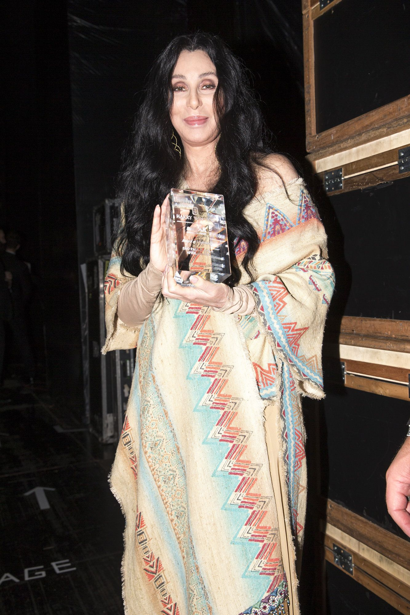 Cher at the annual amfAR The Foundation for AIDS Research Inspiration Gala in São Paulo  Kevin Tachman / BackstageAT  More images: http://bkstge.at/amfARsp2015