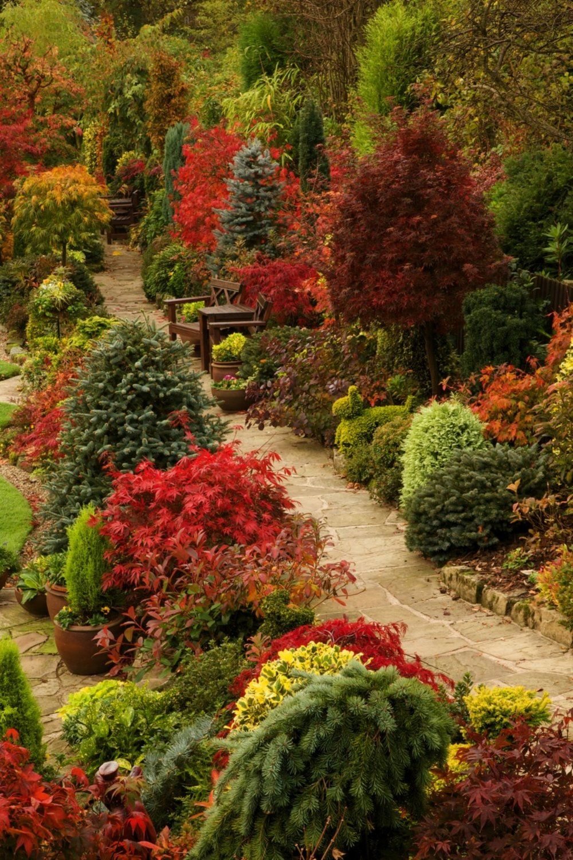 50 Enchanting Garden Paths Autumn garden, Beautiful