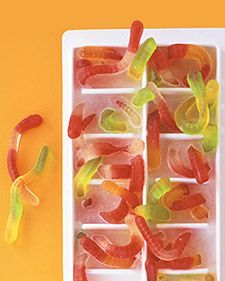 Put the worms in an ice-cube tray, letting them stick out of the top and sprawl over the edges, and fill tray with water or clear drink; freeze. Add cubes to a clear beverage, and watch as kids squirm with delight.