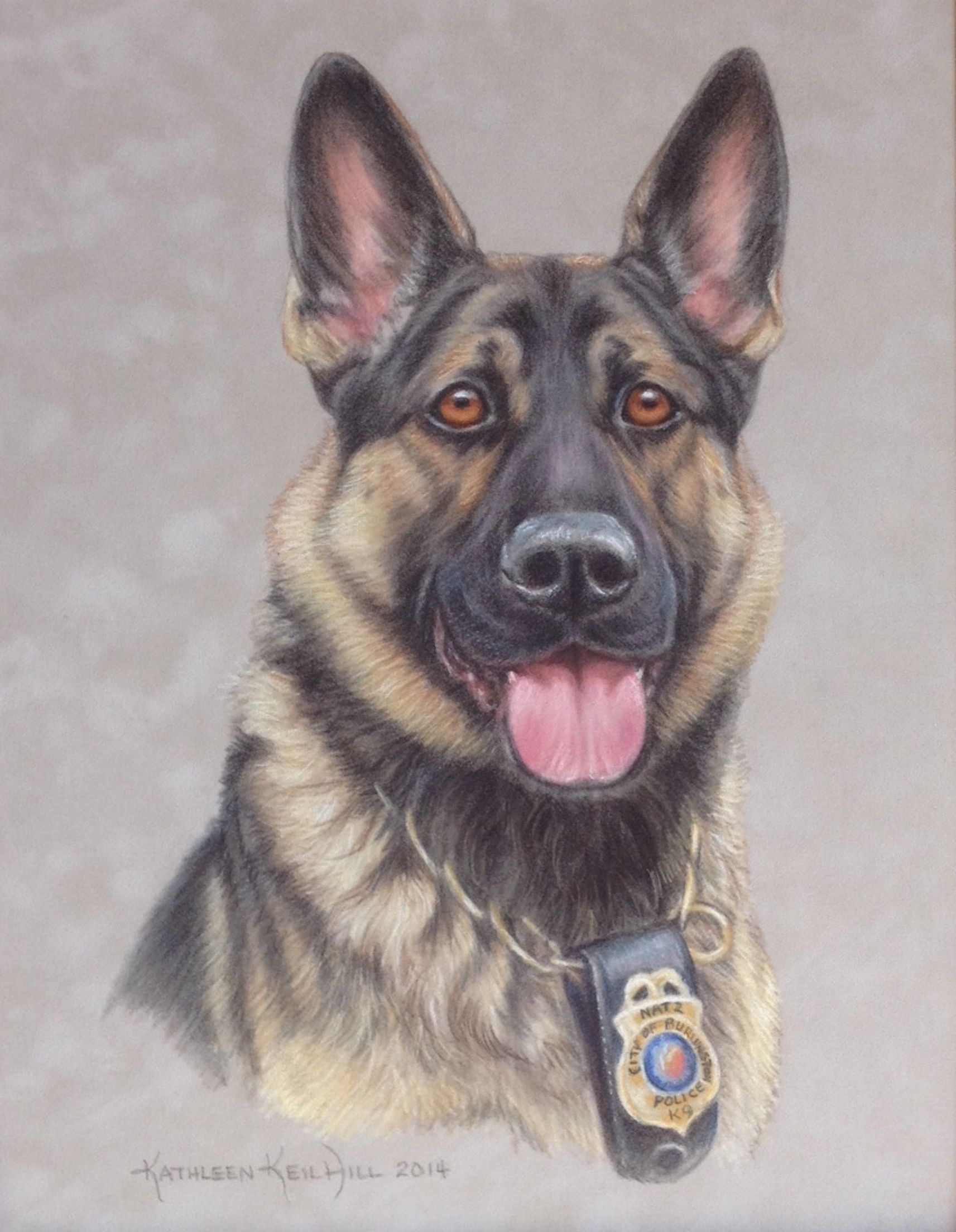 this beautiful dog was the special partner of a police officer