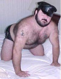 Bear Gay Rencontre
