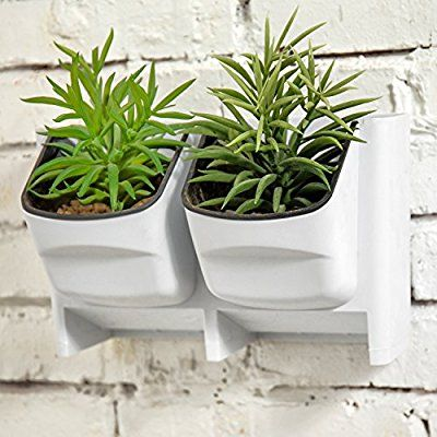 Amazon Com Mygift Vertical Living Wall Planter For Indoor 400 x 300