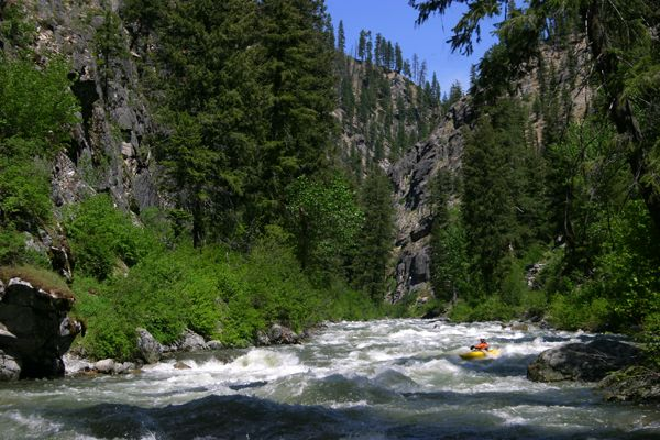 Boise river fishing google search just shut up and for Boise river fishing