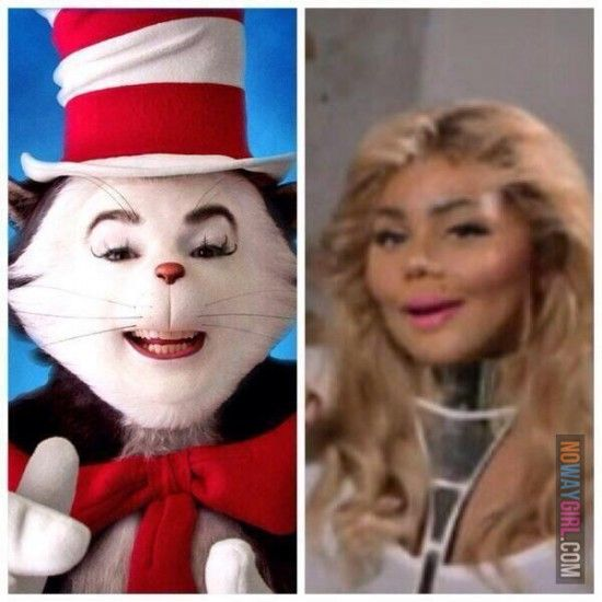 Lil Kim Cat In The Hat Lil Kim Funny Laugh Funny Bunnies