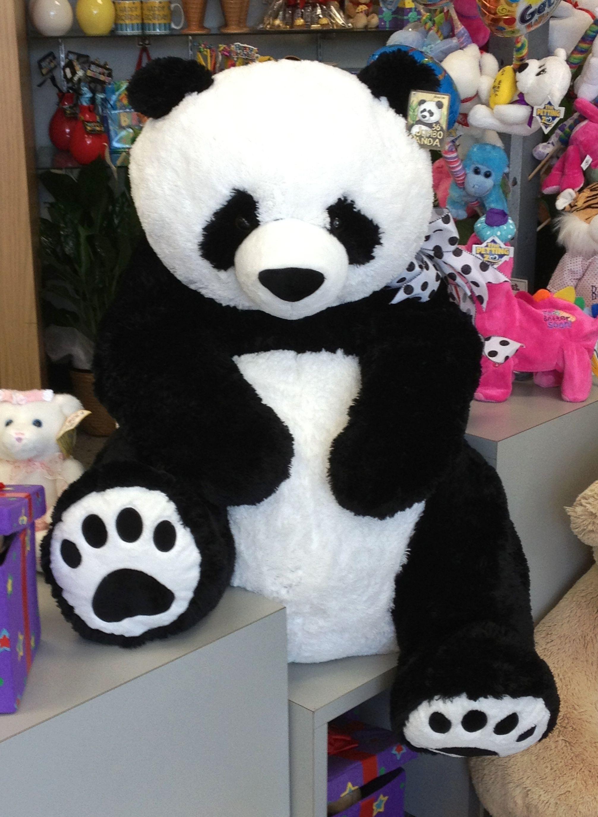 Petal's new friend Jumbo It's PANDA-MODIUM here at Norfolk Florist. Stop in to visit our new Panda