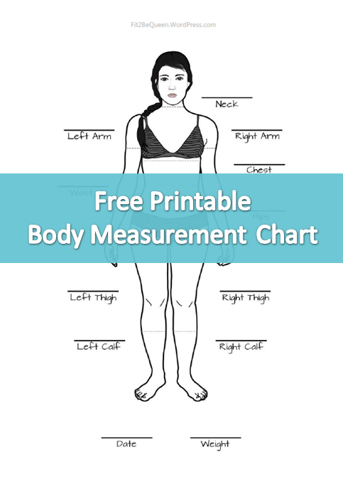 Free printable body measurement chart perfect for tracking weight loss progress fit bequeen alyssad also rh pinterest