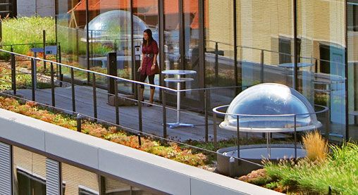 Pin On Green Roof Details