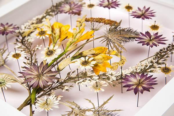 Natürlich schöne Dekoration: gepresste Blumen im Rahmen Kosmetikerinnen-Magazi…