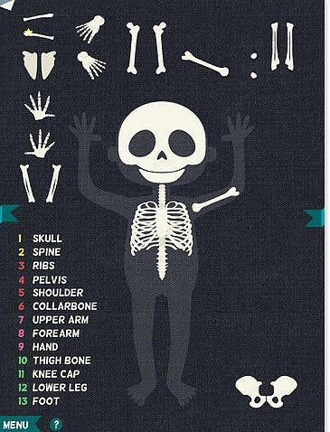 Human anatomy apps for kids - they are never too young to start!