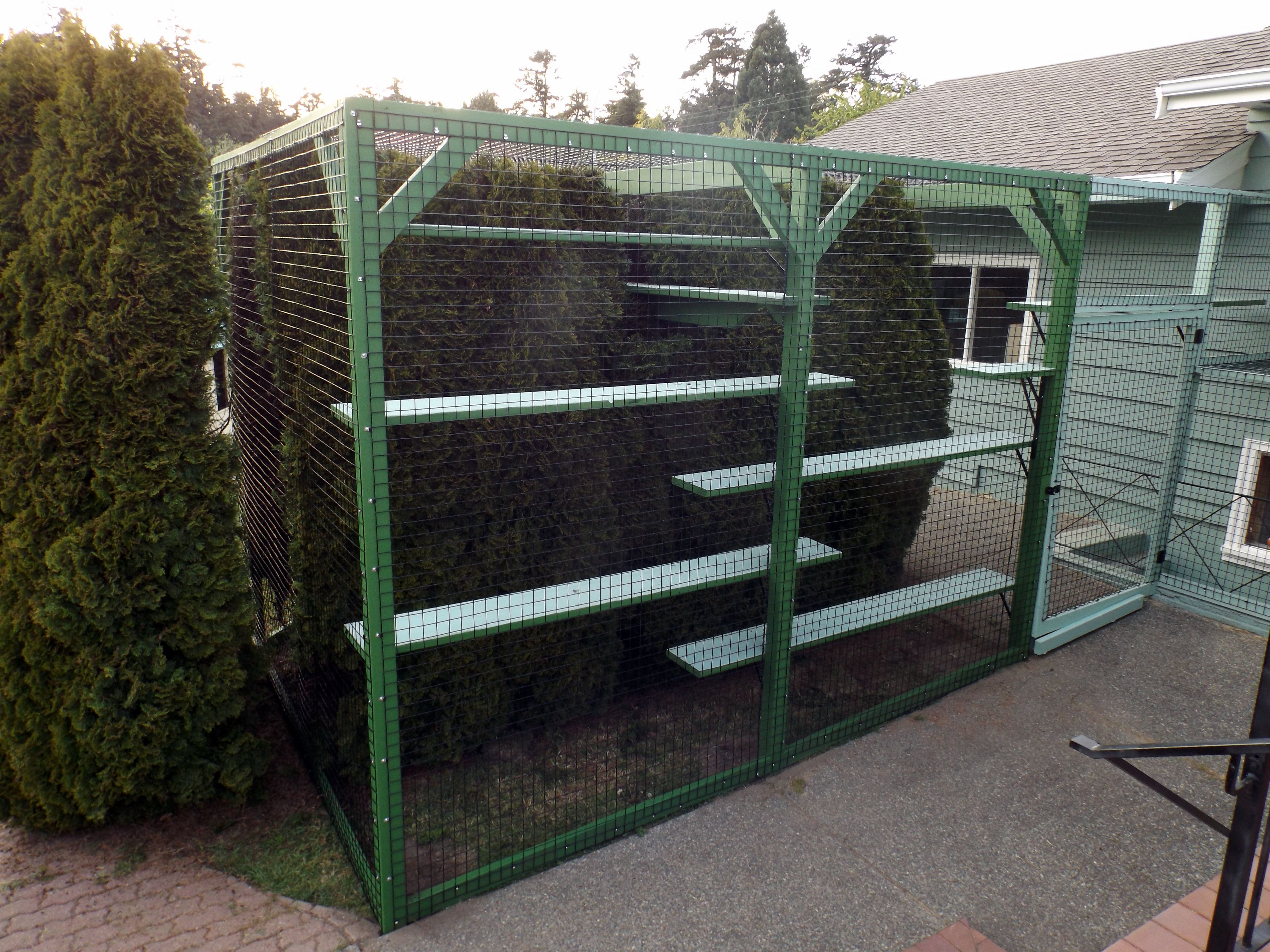 A large enclosure for 3 dogs and 3 cats, by Beautiful World Living Environments, abeautifulworld.org