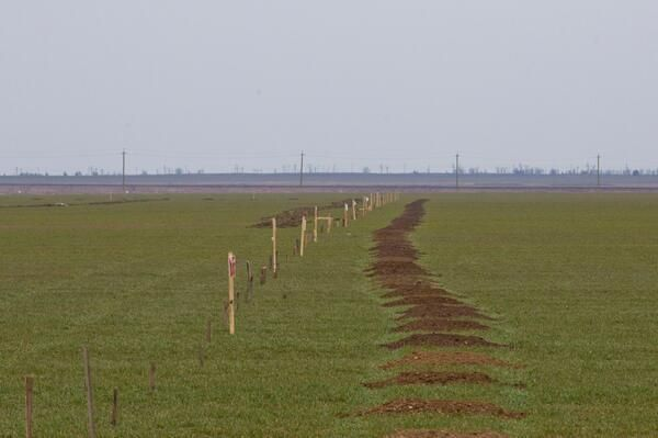 Apparently a minefield at the #Ukraine/#Crimea'n border has been set up by pro #russian forces (via @Steiner1776) 03-2014