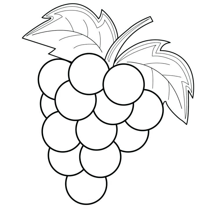 Grapes Coloring Pages Best Coloring Pages For Kids Animal Coloring Pages Grape Drawing Fruit Coloring Pages