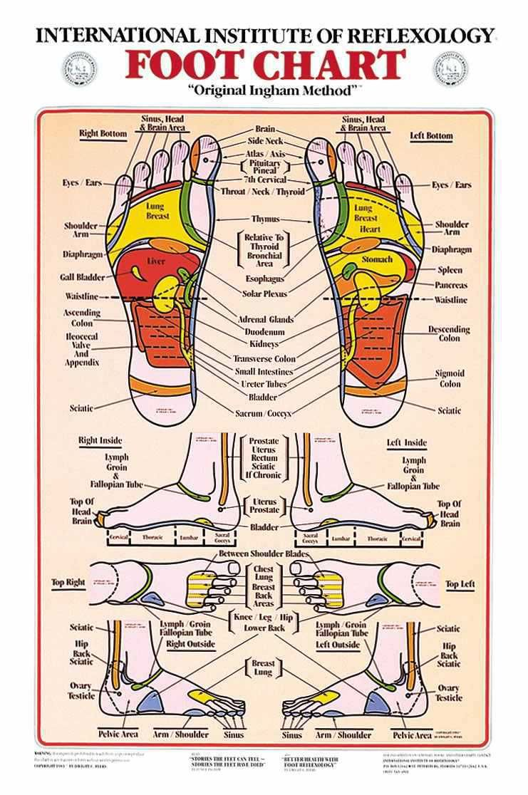 Fertility Massage Self Massage Techniques For Uterus Ovary Reflexology Foot Chart Foot Chart Reflexology