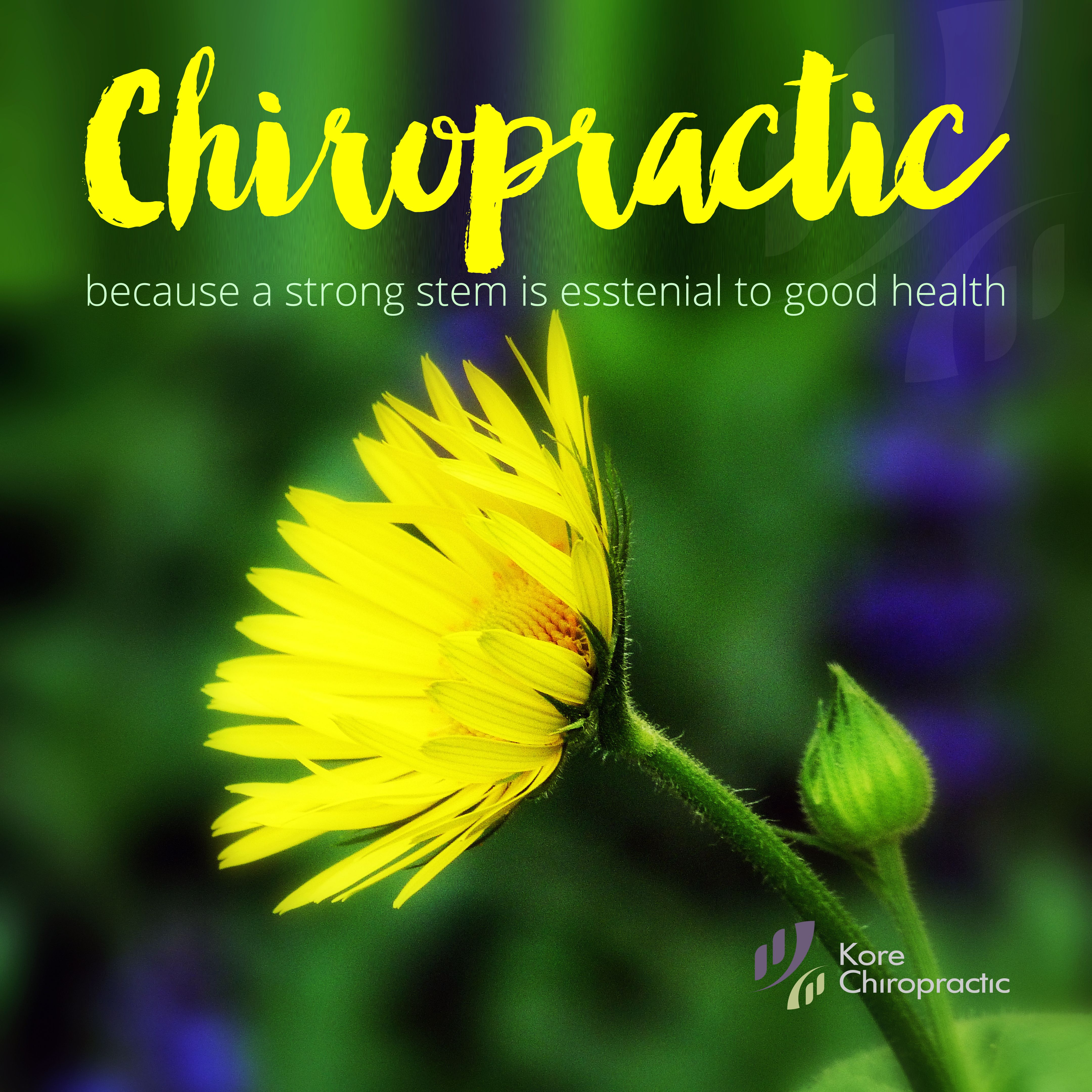 A regular #chiropractic visit can keep you at your best! Becuase a ...