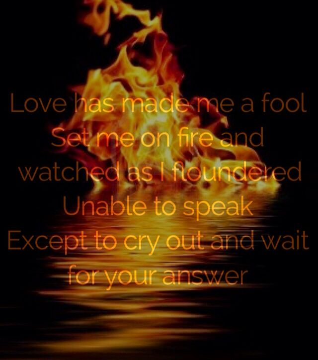 Love Has Made Me A Fool, Set Me On Fire And Watched As I -8424