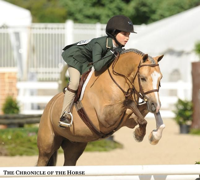 Photo by Mollie Bailey Caroline Passarelli rode Armani to the small pony hunter reserve title. | The Chronicle of the Horse