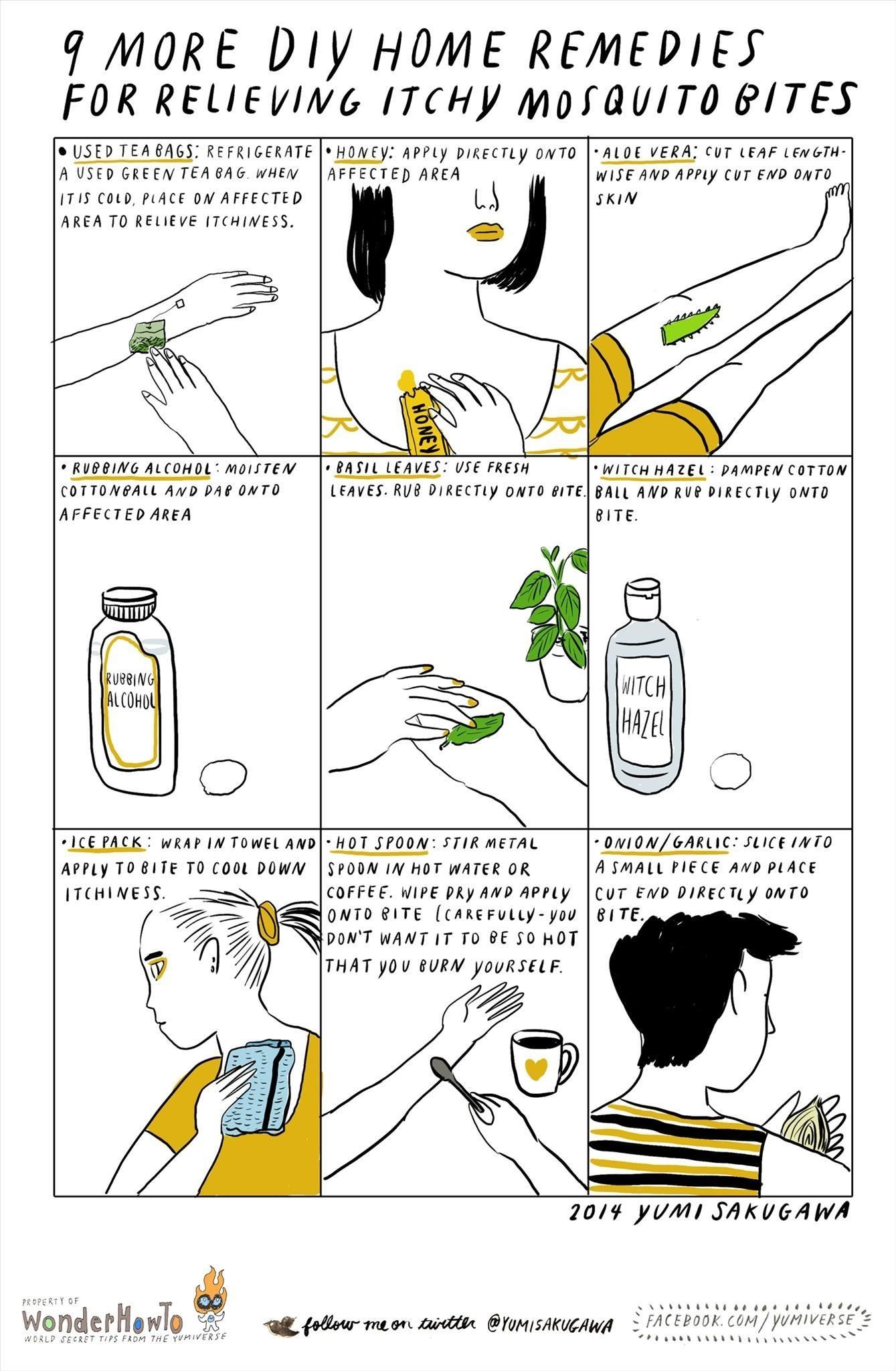 Folk remedies for mosquitoes