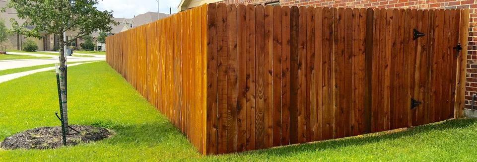 Fence Restoration Fence Repair Fence Staining Stain Houston