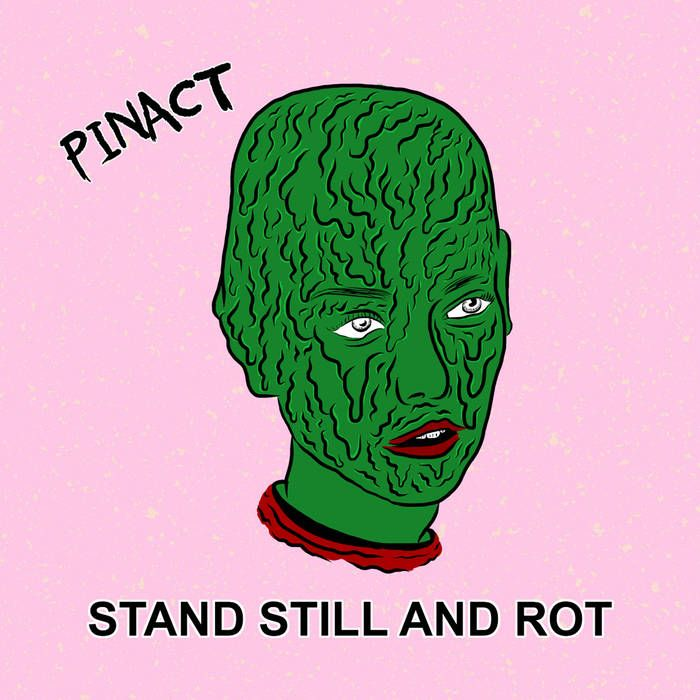 Pinact Stand Still And Rot Catchy Poppy Garage Punk Worth A Listen For Sure Lp Vinyl Debut Album Dinosaur Jr