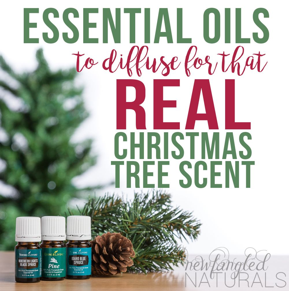 How To Get That Real Christmas Tree Scent With Essential Oils Welcome To Beth S Yl Website Essential Oils Christmas Christmas Tree Essential Oil Blend Christmas Tree Scent