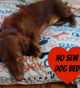 No Sew Dog Bed! DIY in just a couple of hours - it\u0027s my pup\u0027s favorite bed! Fleece a pillow and some scissors are all you need to create a comfy quick ... & No Sew Dog Bed! DIY in just a couple of hours - it\u0027s my pup\u0027s ... pillowsntoast.com