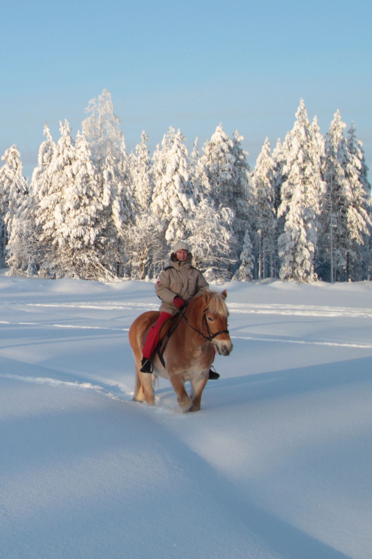 Les Sabots Dans La Neige Fraiche De La Laponie Finlandaise Laponie Chevaldaventure Laponie Laponie Finlandaise Voyage Laponie