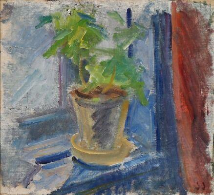 Opstilling med potteplante i vindue