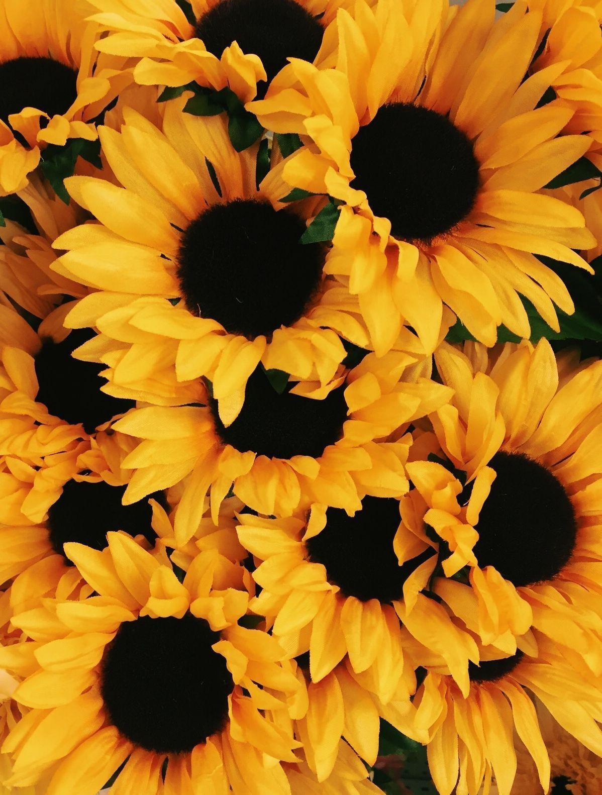 yellow aesthetics — sunshineyposts more of my photography