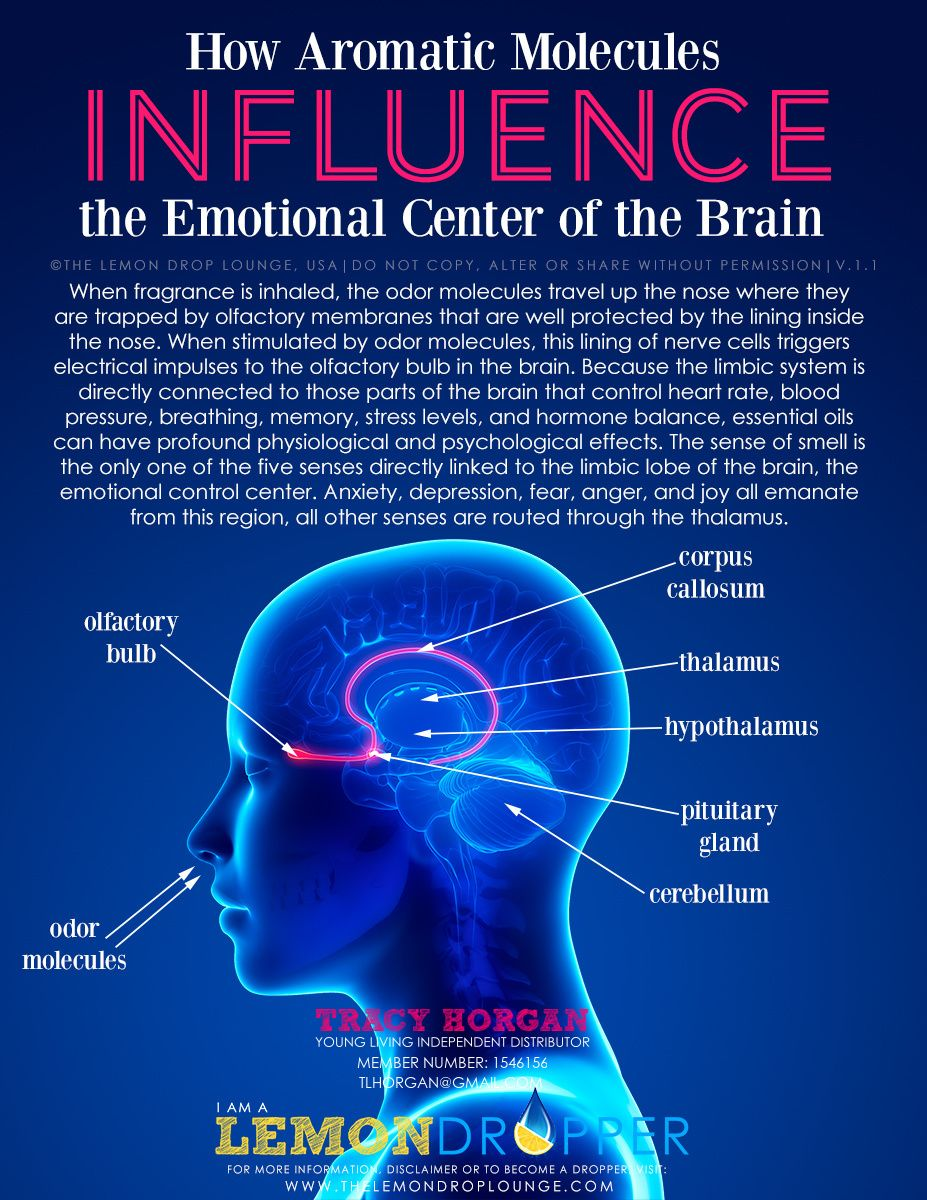 psychology and the senses