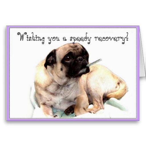 Wishing You A Speedy Recovery Pug Greeting Card Zazzle Com