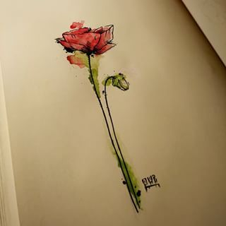 #poppy #flower #coquelicot #watercolor #aquarelle #red #green #feutre #pen #drawtattoo #art #dessin #draw #tattoo #tatouage #instaart #instatattoo #instadraw #designer #graphictattoo #owz All rights reserved thanks