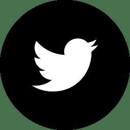 Twitter Twitter Logo Free Icons Logos