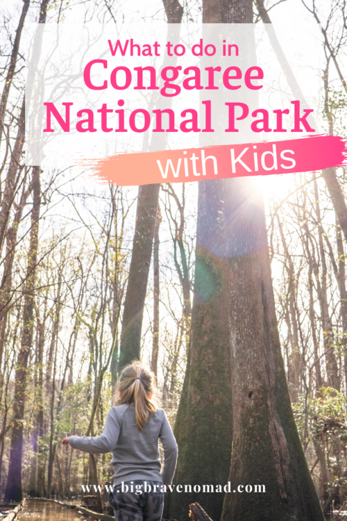 What to Do in Congaree National Park with Kids — Big Brave Nomad