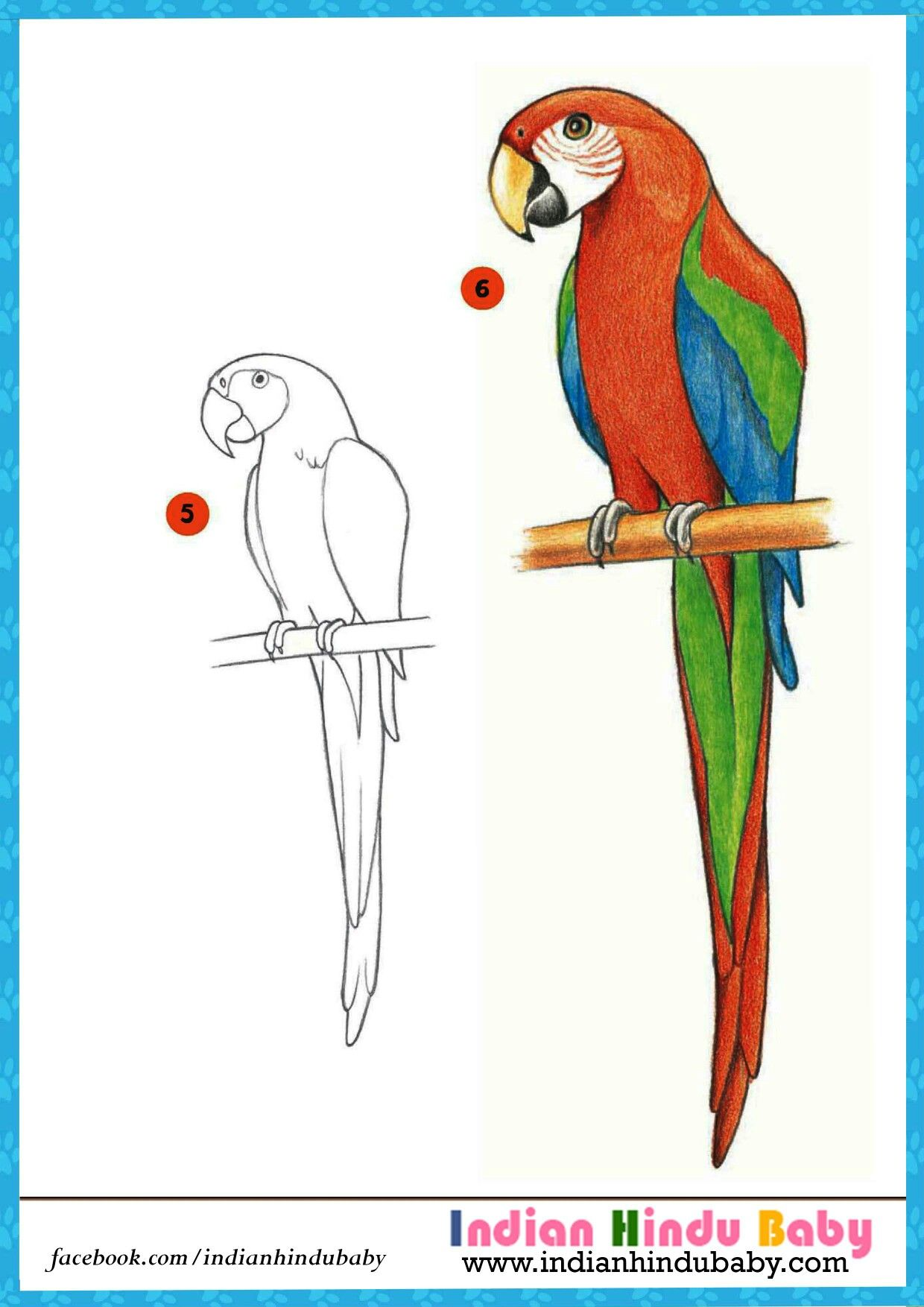 the beauty of colorful parrot macau is marvellous teach your kid to draw - Paint Drawing For Kids