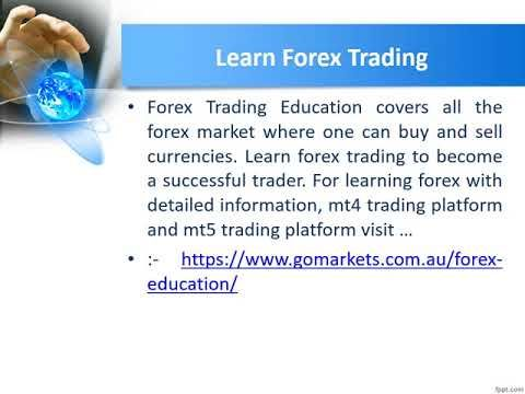 Forex trading education for beginners