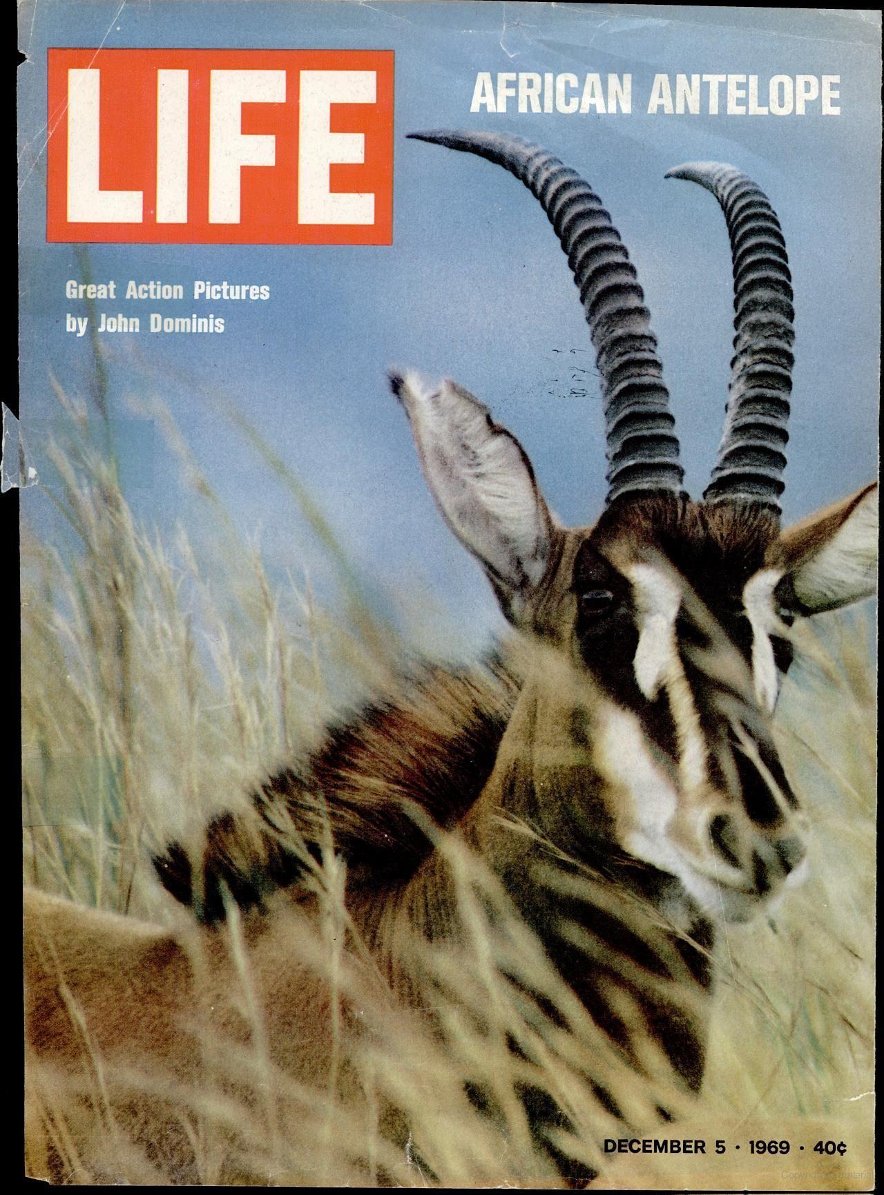 December 5, 1969 (African Antelope)