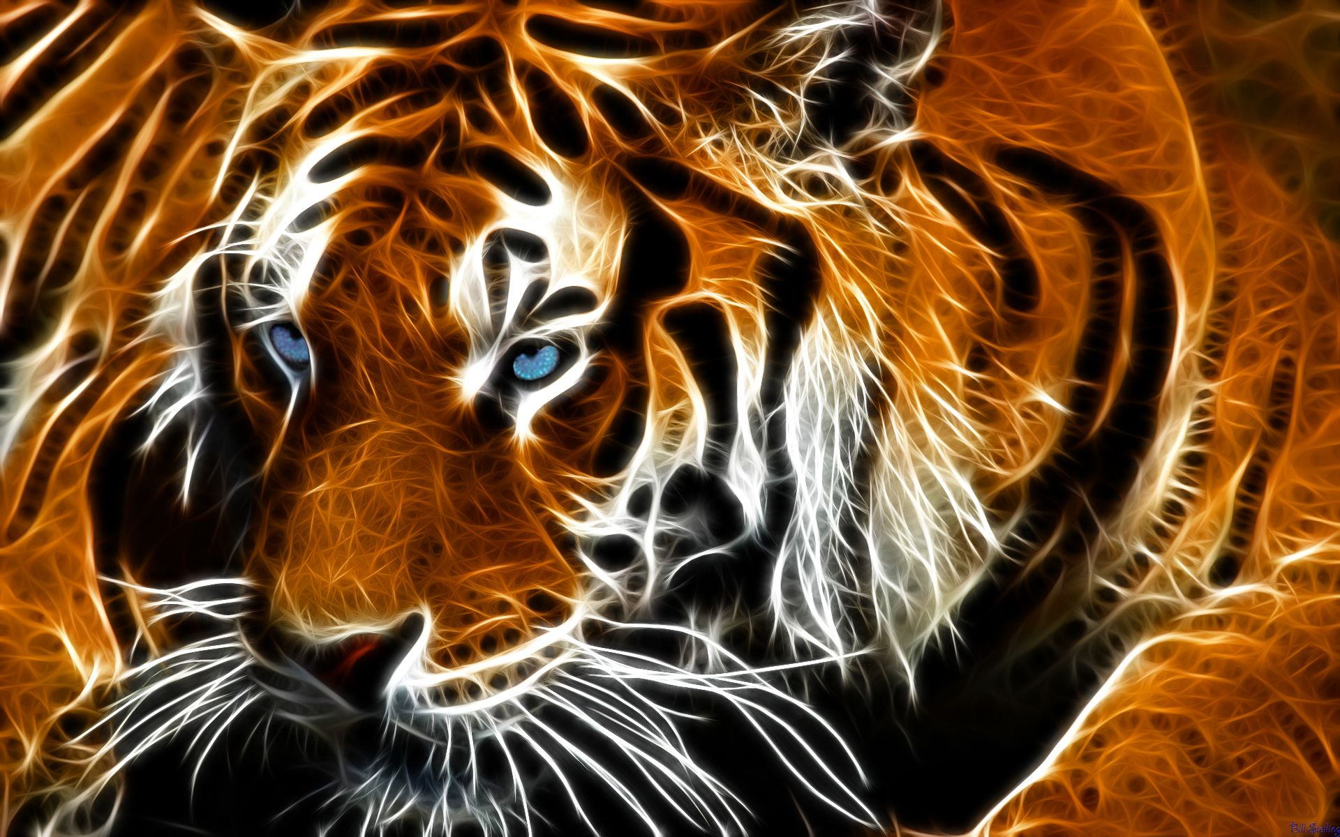 Deviantart more like tiger reflection by billstelling animals deviantart more like tiger reflection by billstelling altavistaventures Choice Image